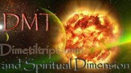 What is DMT? DMT Molecule and Spiritual Size